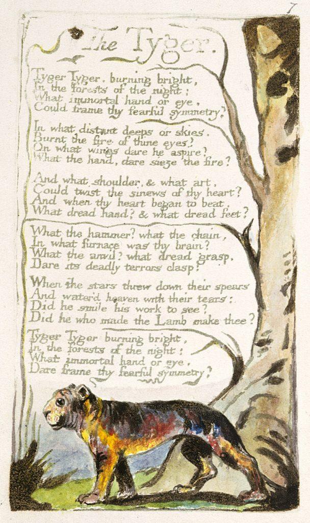 Blake's illustration of The Tyger